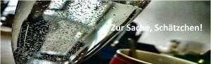 2015-ZurSacheLogo